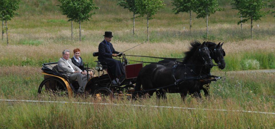 koets met friese paarden
